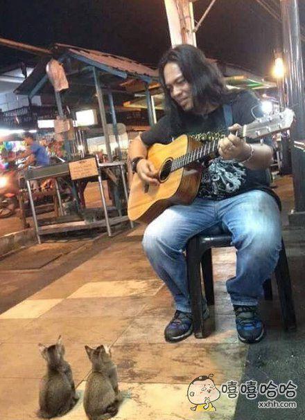 在街上有人弹结他卖艺,过了一阵子居然来了两只小喵星人坐在他面前听他唱歌