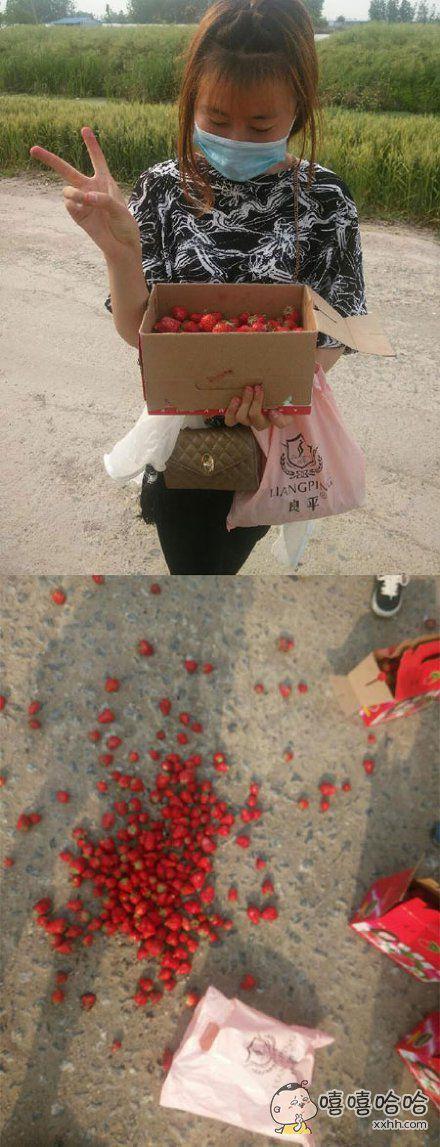 又到了摘草莓的季节喔