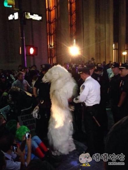 一只北极熊因寻衅滋事被逮捕