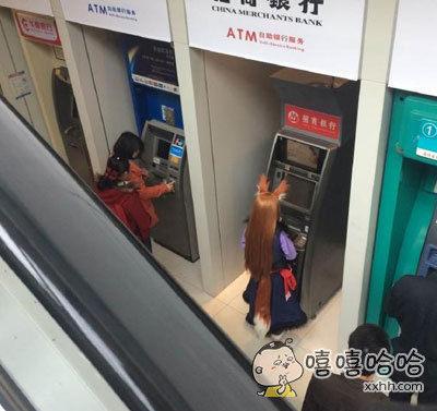ATM前发现了一直野生的狐狸精