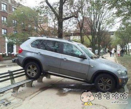 看见一个停车高手了