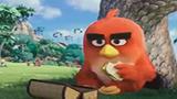 愤怒的小鸟爆笑来袭