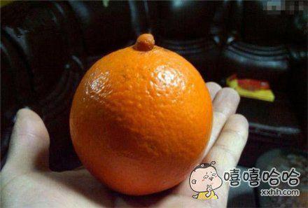 卖橙子的非说是脐橙,我怎么看都像是奶橙