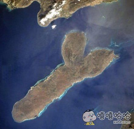 这是什么岛?!