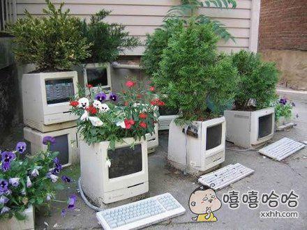 这是盖茨家的后花园吧