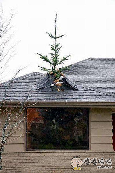 圣诞节外出度假后回家。。。