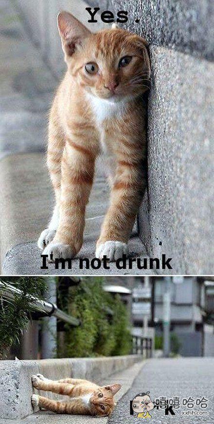 喝醉时的你