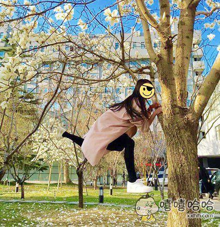 飞的时候不小心,撞树上去了~