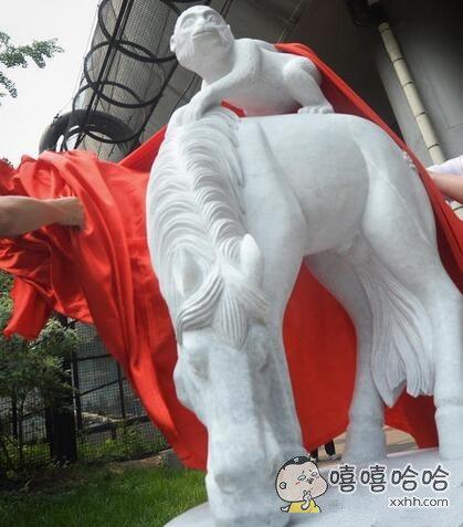 马背上的是神马东东,看着好好玩的啊