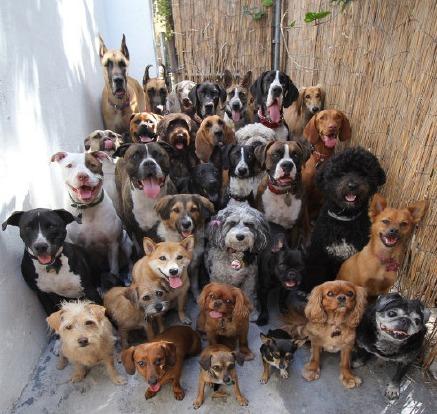 如果有一天,你回家打开家门发现这样的场景......