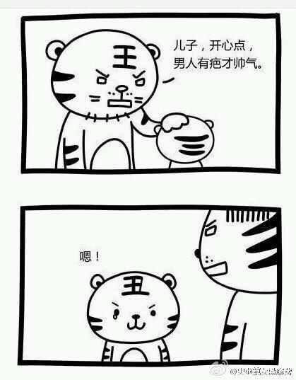 这是关于一只老虎老爸和一只小老虎的对话,你们点进来看看就知道这到底有多冷了。