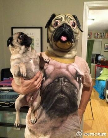 哈哈哈哈哈哈主人是神经病吧快把狗狗吓傻了!