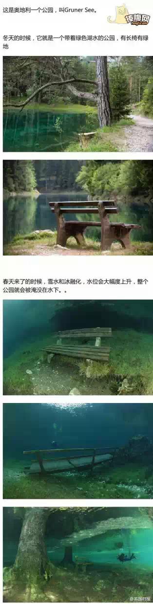 弱爆了中国公园河里的垃圾10月1日补货.一年四季不变