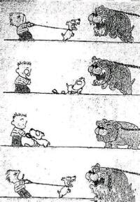 什么叫狗仗人势。。我承认我笑了。