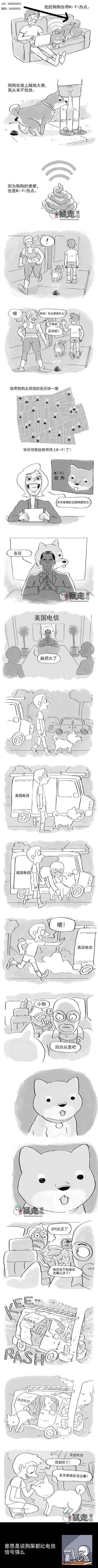 我有一条Wifi狗