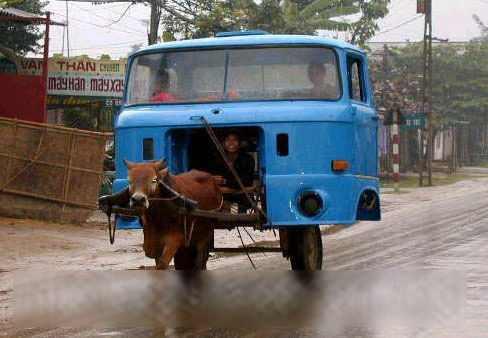 泥马…牛啊!