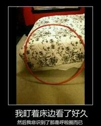我盯着床边看了好久,才发现原来是……!!!!