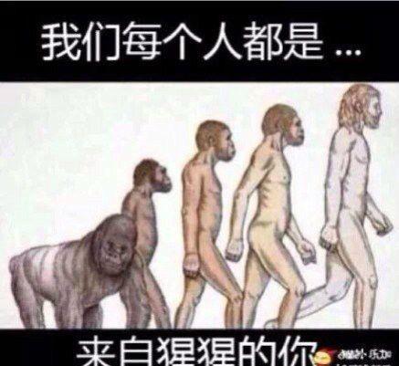 我们每个人都是来自猩猩的你。