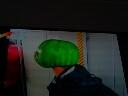 西瓜头,不错,想要的就过