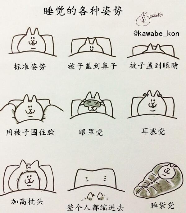 各种睡觉姿势,你是哪一种?