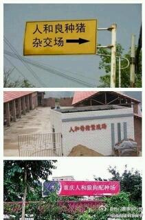 其实重庆有个地方叫人和......