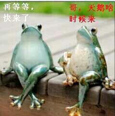 """教授在河边看到两只乌龟缩着一动不动。问一农民:它们在干吗?农民说:在PK。 教授不解:动都没动过,P什么K?老农:在比谁的寿命长。教授:可是壳上有甲骨文的那只,早就死了啊?这时,另一只猛然探出头来骂道:MD,死了也不吭一声!另一只也伸出头来:""""SB!专家说啥你信啥!"""""""