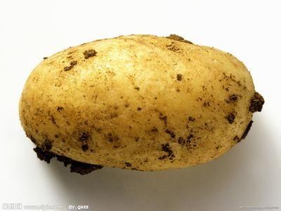 """超市里,两个妇女在买菜。其中一个拿起一个土豆:""""和我老公的一样""""!""""哇!这么大?""""""""不,这么脏"""""""