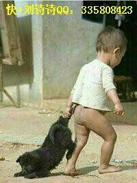 郑爽:别人手牵手,我牵我家狗。 执狗之手,将狗拐走。 若狗不走,将狗拖走。