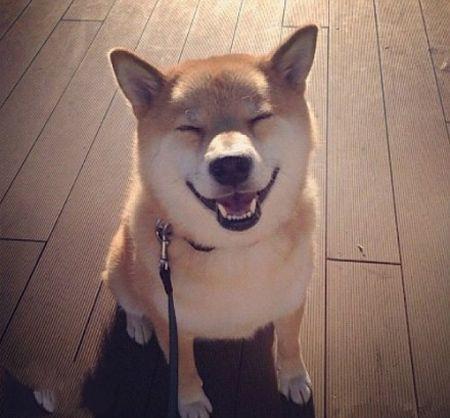 一天很短,开心了就笑, 不开心就过一会儿再笑!