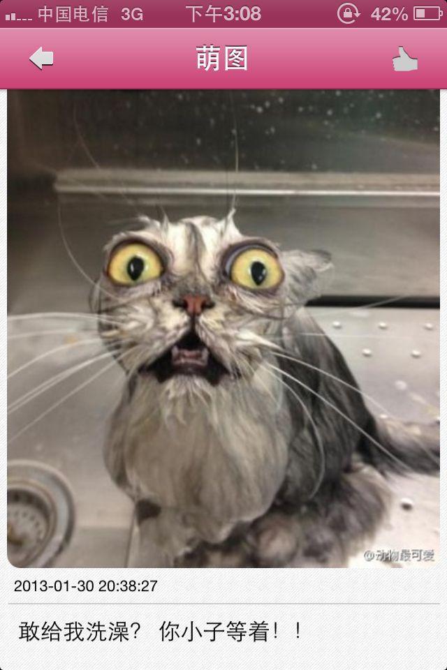 你特么再给我洗一次澡试试看?!妈的!!