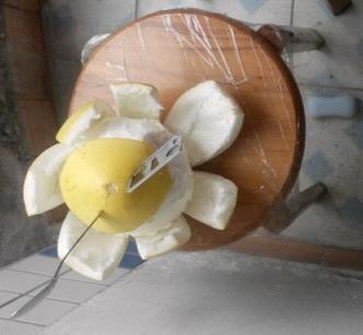 切柚子神器噢  另有亮点呦*^▁^*