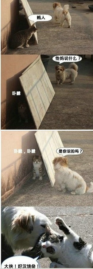 看一次,笑一次!!!!!!!