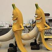 这年头,香蕉也尿尿,而且还在众人面前尿,难到是因为找不找WC吗?