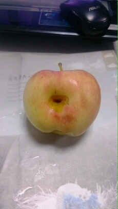 这苹果看来是要火了  这第三个洞起什么名好呢?肚脐眼?小伙伴们自由发挥