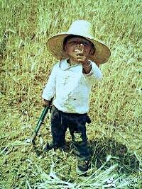 你拽个毛线啊? 有种你就跟小爷一样干几天农活!看看你能帅得到哪里去!!!
