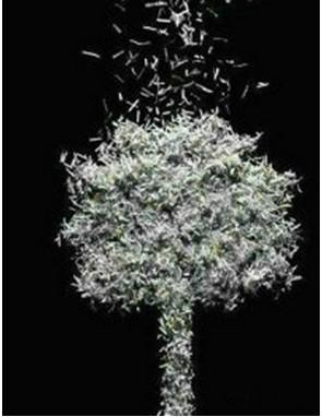 如果你亲眼看着一棵棵大树变成一本本作业本时,你还忍心写作业吗? 要知道,没有买卖,就没有杀害!!! 为了保护大自然,为了下一代!! 我们拒绝写作业!!