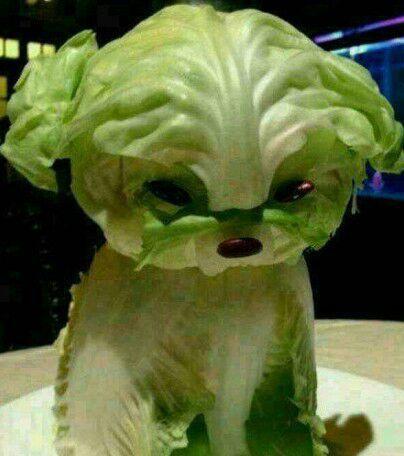 卖萌的蔬菜。。。。。卡哇伊