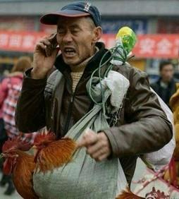一农民进城,看见一广告牌上写着:苹果,优惠价4688!老头一惊:谁吃得起?往前走,又看见一个广告牌:小米,2299!老头想,八成是骗子!继续前行,又看见一个牌子写着:小辣椒,只要998!老农实在忍不住了,拿起手机给儿子打电话:娃啊,别打工了,快回家种地吧,要发了... 三楼怎么看?