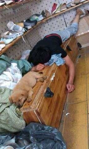 狗事人类的好朋友、这话不假