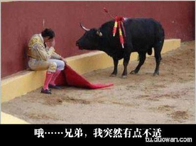 斗牛的时候有点晕。牛都被插了剑还过来安慰。好感动