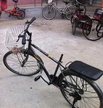 话说这是一个女神骑的自行车…