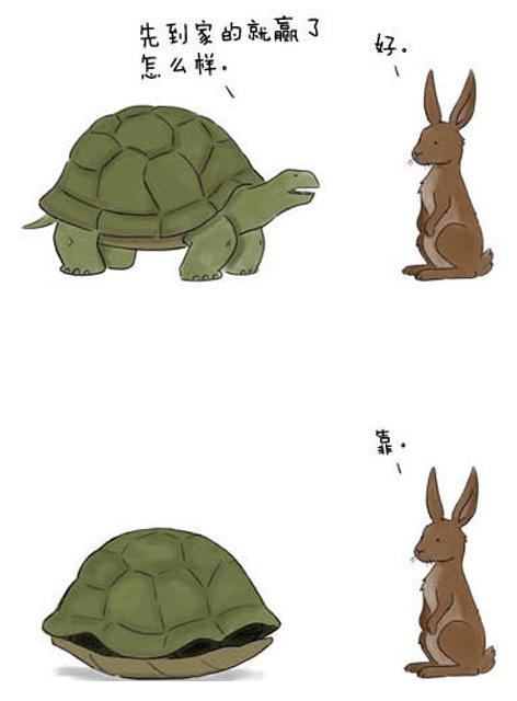 不一样的龟兔赛跑。。你一定想不到。。不信你不笑