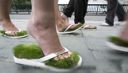 这是环保和还是践踏呢