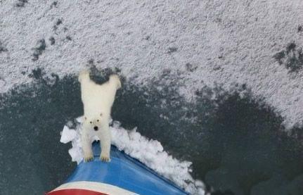 """你给我出去 一艘破冰船闯入了一个北极熊的领地,不过显然,这个北极熊似乎不太喜欢他的新客人的样子:""""你给我出去!哎好重推不动""""一副可怜无奈的眼神啊"""
