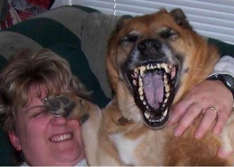 哎呀妈呀,太好笑了!