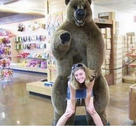 熊熊,让我来~
