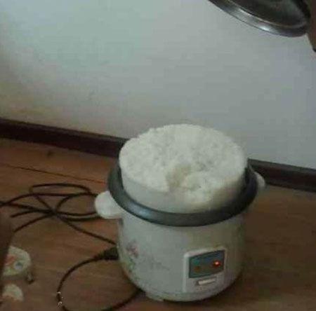 二货老婆蒸的米饭。。。。。