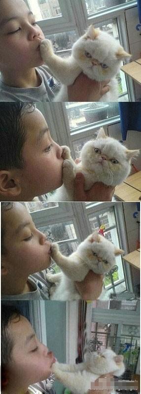 亲下。NO。。亲下嘛。NONONO!!!人类太无节操了