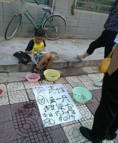 路边碰到的一个小商人,问他蝌蚪怎么卖,他说买一只青蛙送一只蝌蚪,蝌蚪是非卖品。有人又问青蛙买来有什么用,他天真的眨了眨眼睛回答到,抓蚊子呀!