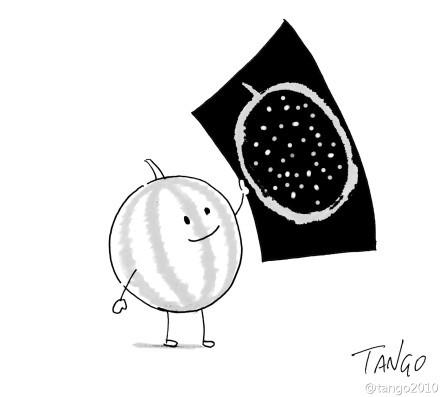 西瓜的胸怀最宽广,因为X光片显示它能装下一个宇宙。。。via@tango2010